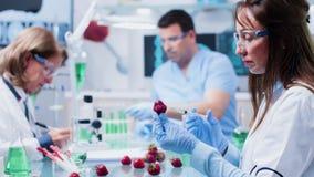 Δοκιμή ΓΤΟ στο εργαστήριο σύγχρονης και βιοτεχνολογίας υψηλών σημείων απόθεμα βίντεο