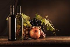 Δοκιμή κρασιού και ζωή φρούτων ακόμα Στοκ Φωτογραφίες
