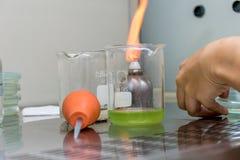 Δοκιμή μικροβιολόγων για τη δοκιμή στο πιάτο με την αποστηρωμένη τεχνική σε μια κουκούλα καπνών Στοκ Εικόνες
