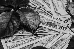 Δολάρια σε γραπτό Στοκ Εικόνα