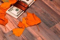 Δολάρια ως δώρο Στοκ φωτογραφία με δικαίωμα ελεύθερης χρήσης