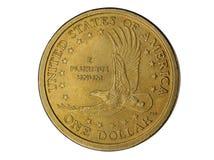 δολάριο νομισμάτων ένα Στοκ εικόνες με δικαίωμα ελεύθερης χρήσης