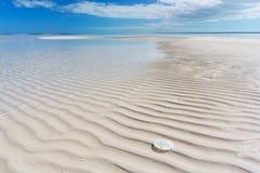 Δολάριο φραγμάτων άμμου σε εκβολή ποταμού και άμμου, κυματισμοί και κατασκευασμένη άμμος στοκ εικόνες