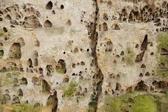 Δομή της βράχος-λεπτομέρειας ψαμμίτη Στοκ φωτογραφία με δικαίωμα ελεύθερης χρήσης