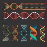 Δομή DNA γενετικής Στοκ Εικόνες