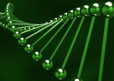 δομή DNA διανυσματική απεικόνιση
