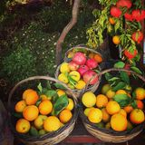 Δονούμενα μεσογειακά καλάθια φρούτων Στοκ εικόνα με δικαίωμα ελεύθερης χρήσης