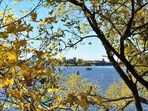 Δονούμενα χρώματα πτώσης Στοκ φωτογραφίες με δικαίωμα ελεύθερης χρήσης