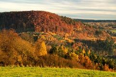 Δονούμενα χρώματα του φθινοπώρου Στοκ φωτογραφίες με δικαίωμα ελεύθερης χρήσης