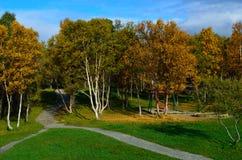Δονούμενο δάσος φθινοπώρου με την παιδική χαρά Στοκ εικόνα με δικαίωμα ελεύθερης χρήσης