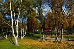 Δονούμενο δάσος φθινοπώρου με το σύνολο ταλάντευσης παιδικών χαρών Στοκ φωτογραφίες με δικαίωμα ελεύθερης χρήσης