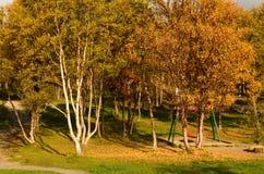 Δονούμενο δάσος φθινοπώρου με το σύνολο ταλάντευσης παιδικών χαρών Στοκ εικόνα με δικαίωμα ελεύθερης χρήσης