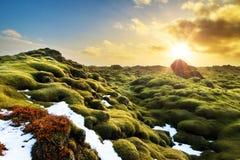 Δονούμενο τοπίο Ισλανδία Στοκ Εικόνα