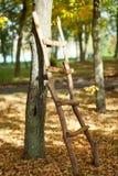 Δονούμενο φθινόπωρο σε ένα πάρκο Στοκ Φωτογραφία