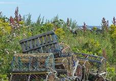 Δοχεία αστακών στην ακτή της Northumberland Στοκ Εικόνες