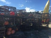 Δοχεία καβουριών που συσσωρεύονται στην παραλία Στοκ εικόνες με δικαίωμα ελεύθερης χρήσης