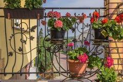 Δοχεία λουλουδιών με τα λουλούδια που κρεμούν στη σχάρα επεξεργασμένου σιδήρου του πεζουλιού Στοκ φωτογραφία με δικαίωμα ελεύθερης χρήσης