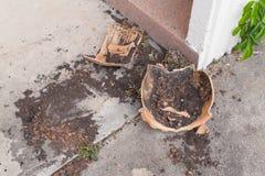Δοχεία λουλουδιών  σπασμένο δοχείο λουλουδιών, παλαιό εγκαταλελειμμένο Flowerpot σπάσιμο Στοκ Εικόνες