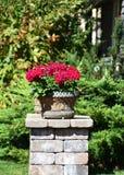 Δοχεία λουλουδιών στη στάση Στοκ φωτογραφία με δικαίωμα ελεύθερης χρήσης