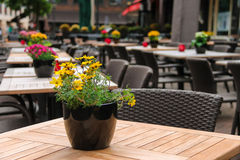 Δοχεία με τα διακοσμητικά λουλούδια στους πίνακες του υπαίθριου καφέ Στοκ εικόνες με δικαίωμα ελεύθερης χρήσης