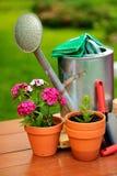 Δοχεία λουλουδιών και δοχείο ποτίσματος στον πράσινο κήπο Στοκ φωτογραφία με δικαίωμα ελεύθερης χρήσης