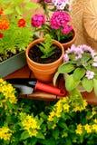 Δοχεία λουλουδιών και δοχείο φτυαριών στον πράσινο κήπο Στοκ φωτογραφία με δικαίωμα ελεύθερης χρήσης