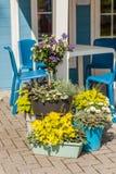 Δοχεία λουλουδιών Στοκ φωτογραφίες με δικαίωμα ελεύθερης χρήσης