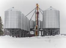 Δοχεία σιταριού Στοκ φωτογραφία με δικαίωμα ελεύθερης χρήσης