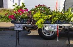 Δοχεία των λουλουδιών και των εγκαταστάσεων για την πώληση στο δίπλωμα του πίνακα στην αγορά αγροτών στοκ φωτογραφία με δικαίωμα ελεύθερης χρήσης
