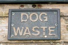 Δοχείο αποβλήτων σκυλιών Στοκ εικόνα με δικαίωμα ελεύθερης χρήσης