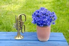 Δοχείο αργίλου Antigue με τα cornflowers και τη σάλπιγγα ορείχαλκου Στοκ Εικόνες