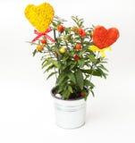 Δοχείο και καρδιές λουλουδιών Στοκ φωτογραφία με δικαίωμα ελεύθερης χρήσης