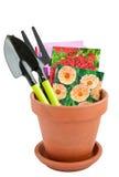 Δοχείο και σπόροι λουλουδιών στις τσάντες εγγράφων Στοκ εικόνα με δικαίωμα ελεύθερης χρήσης