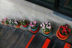 δοχείο λουλουδιών στοκ φωτογραφία με δικαίωμα ελεύθερης χρήσης