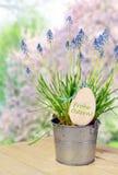 Δοχείο λουλουδιών με τα bluebells Στοκ Φωτογραφία