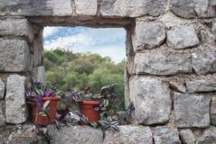 Δοχείο λουλουδιών σε ένα ανοικτό παράθυρο Στοκ Εικόνα