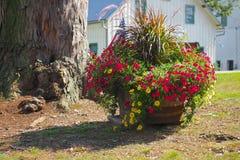 Δοχείο λουλουδιών χώρας Στοκ Φωτογραφία