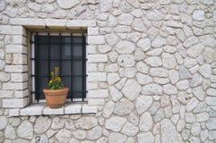 Δοχείο στο παράθυρο Στοκ Φωτογραφία