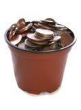 δοχείο φυτών χρημάτων εξαι& Στοκ φωτογραφία με δικαίωμα ελεύθερης χρήσης