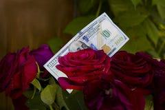 Δολάρια και τριαντάφυλλα Στοκ εικόνα με δικαίωμα ελεύθερης χρήσης