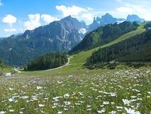 Δολομίτες Ιταλία ουρανού βουνών οδικών σπιτιών λουλουδιών Στοκ Εικόνες