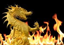 Δράκος με το υπόβαθρο πυρκαγιάς στοκ εικόνα