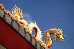 Δράκος στην κινεζική λάρνακα Στοκ Εικόνες