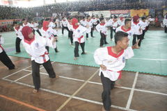 Δράση Silat Pencak Στοκ Εικόνα