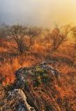 Δραματική αυγή φθινοπώρου Γραφικοί βράχοι στοκ εικόνα με δικαίωμα ελεύθερης χρήσης