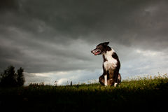δραματικός ουρανός κόλλ&eps στοκ φωτογραφία
