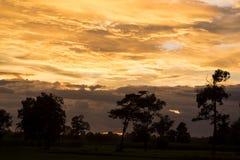 Δραματικός φωτεινός ήλιος ανατολής πέρα από τη δασική σκιαγραφία Στοκ Φωτογραφία