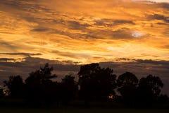 Δραματικός φωτεινός ήλιος ανατολής πέρα από τη δασική σκιαγραφία Στοκ Φωτογραφίες