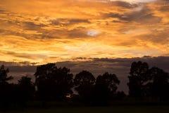 Δραματικός φωτεινός ήλιος ανατολής πέρα από τη δασική σκιαγραφία Στοκ εικόνα με δικαίωμα ελεύθερης χρήσης