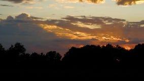 Δραματικό ηλιοβασίλεμα με τις ακτίνες ήλιων πέρα από το δασικό θόλο απόθεμα βίντεο